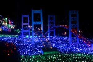 point defiance zoo lights