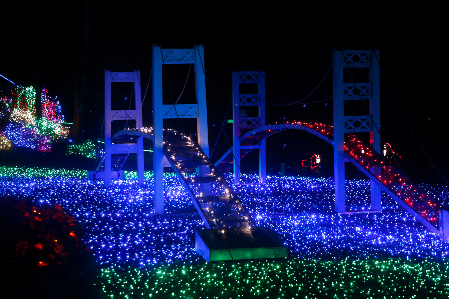 1 zoolights at point defiance zoo aquarium