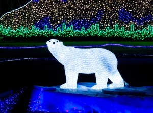 Zoolights @ Point Defiance Zoo & Aquarium | Tacoma | Washington | United States