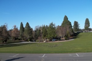 A sunny day at Point Defiance Park.