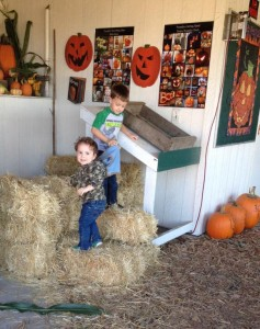Ol' Time Harvest Festival @ Miracle Ranch   Port Orchard   Washington   United States