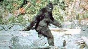 Screenshot of the famous Patterson-Gimlin video. Image from Sasquatch Summit.