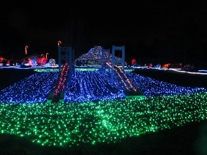 Shimmering displays illuminate the night at Point Defiance Zoo and Aquarium's Zoolights. ZooLights. Photo Credit Amy Anderson.