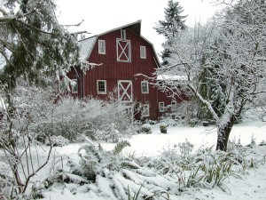 The Betty MacDonald Farm makes for a cozy winter stay on Vashon Island during the winter months – or any time of year. Photo credit: Judith Lawrence.