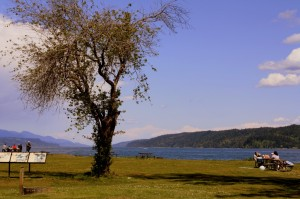 Potlatch State Park is a popular escape on Hood Canal.
