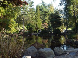 Walk through 765 acres of lush greenery, gardens and walking trails at Point Defiance Park in Tacoma.