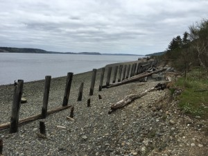 Only one and a half miles from the Sesqualitchew Creek trail head, this secluded stretch of beach is fun to explore with the whole family.