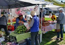 Pierce County Farmers Markets