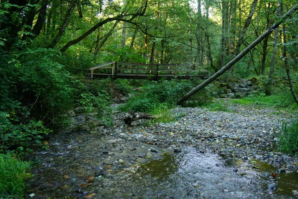 Swan Creek Hiking Trails