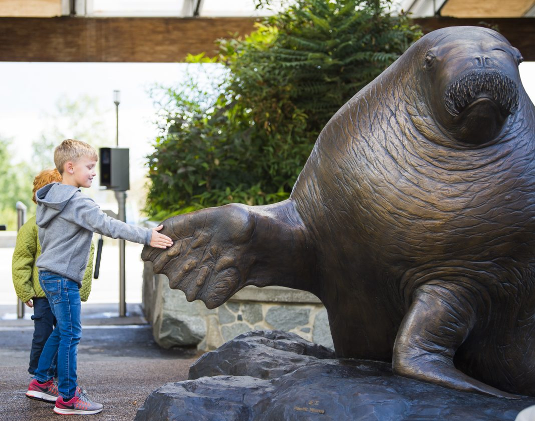 Point Defiance Zoo and Aquarium ET