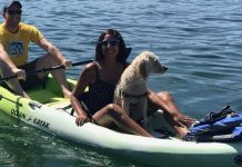 Olympia Orthopaedic Associates Kayaking with Marty