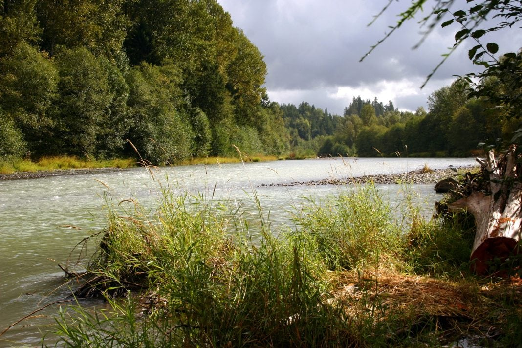 Powell Creek Nisqually