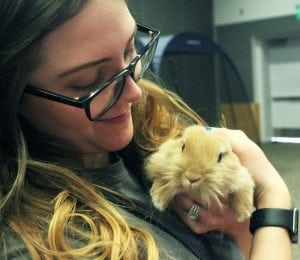 Volunteer with Rabbit