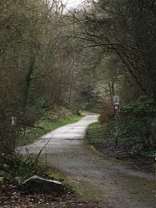 Thurston County Trails