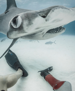 Mike Coots self-portrait with hammerhead