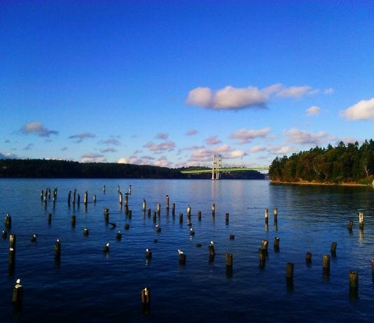 View from Titlow