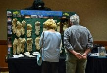 sasquatch summit people looking at casts