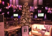 Festival of Trees Seahawks