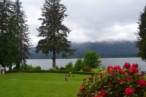 View of Lake Quinault with red flowers