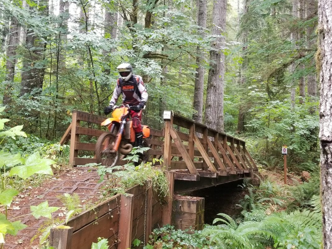 Dirt Biking in Thurston County