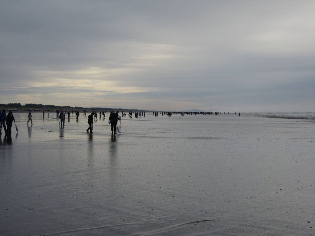 Clam Digging on the Washington Coast