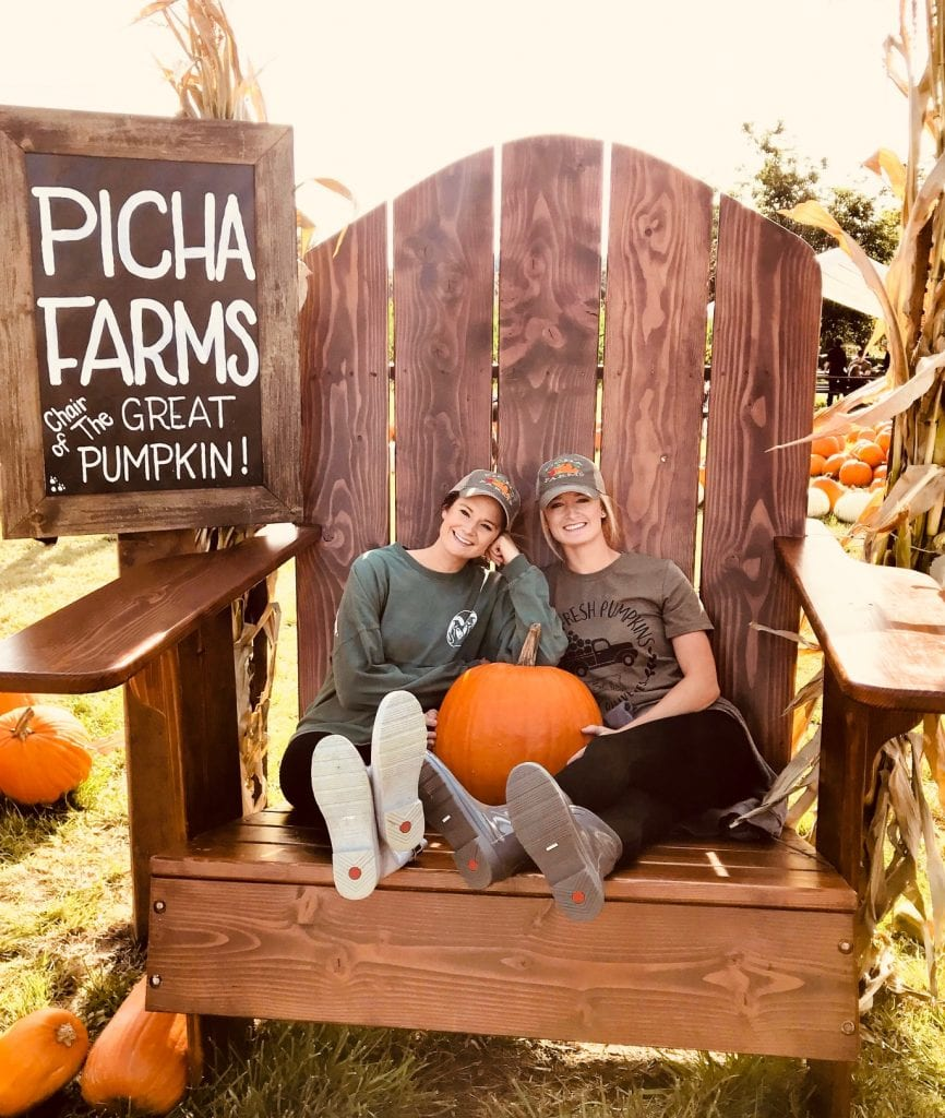 Pierce County Pumpkin Patch