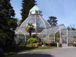 seymour conservatory