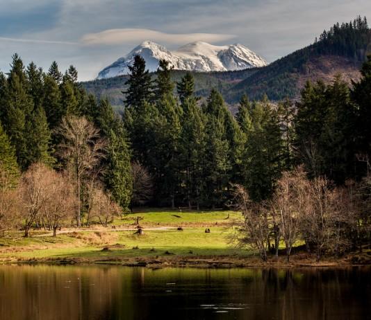 View from Northwest Trek