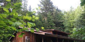 Tatoosh Lodge