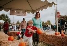 Harvest Festival Fife