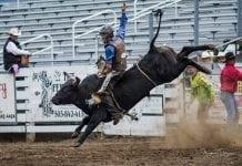 Clash of the Cowboys Washington State