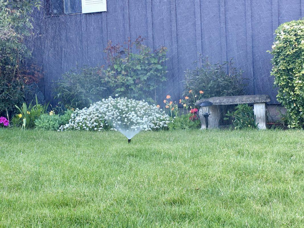Boggs Inspection Services Sprinklers Spring Startup