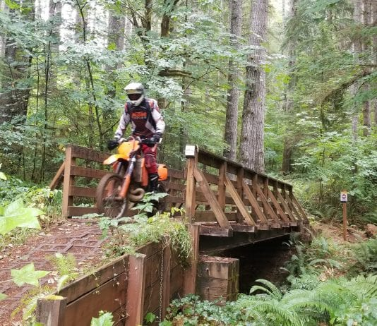 Dirt Biking in Thurston County