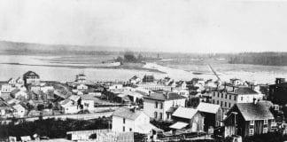 New Tacoma 1881