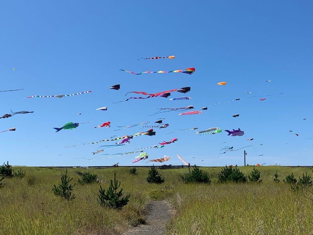Grays Harbor Kites