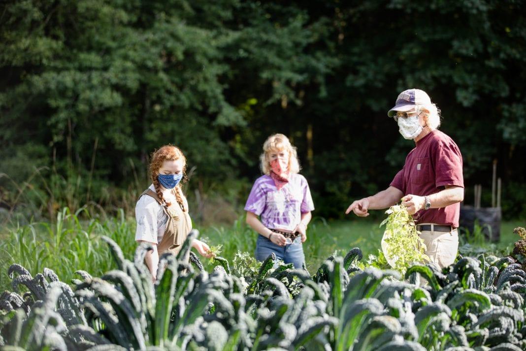 Evergreen Organic Farm